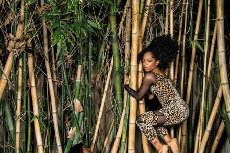 City Dance Company Presents It's A Jungle Out There