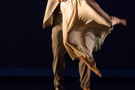 MFAH Commissions New Work From CORE Performance Company