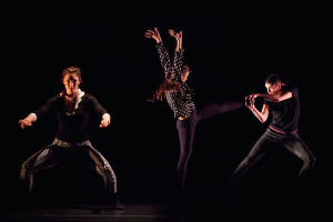 NobleMotion and Musiqa - Tonal Impact - Photographer Lynn Lane-26