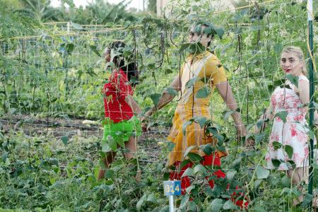 "The Pilot Dance Project Presents Lori Yuill's ""Green Zebras"""