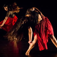 Dance at the J: Celebrating 40 Years of Commitment to Dance in Houston